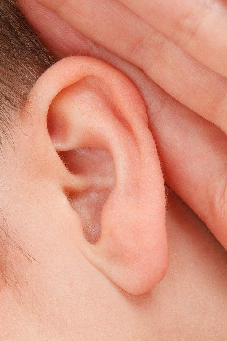 Korekta uszu, kompendium / fot. materiały prasowe