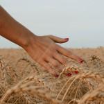 Paznokcie Po Wakacjach – testujemy manicure hybrydowy Kabos